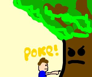 boy pokes tree, tree scowls at him