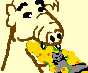 Alf pukes a kitten