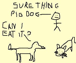 Pig Dog wants permission to eat the cat