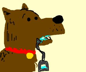 Canine saliva drainage device
