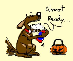 Dog dressed as rabid canine for halloween