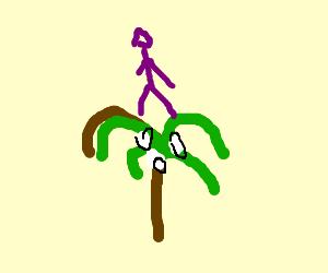 A purple guy in a palmtree