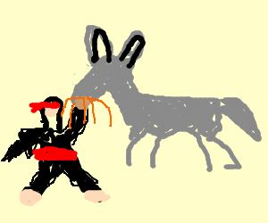 Ninja punches donkey