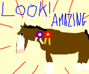 Look at my Horse, my Horse is amazing