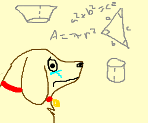 geometry makes puppy sad
