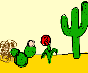 plants and 1 flower in the desert