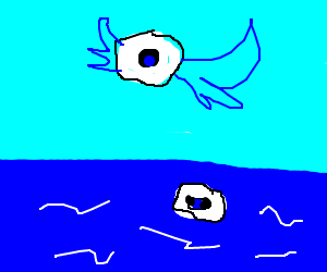 one eye in sky and one eye in water