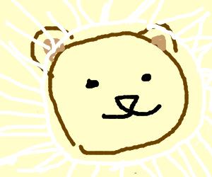 Bearfaces glare.