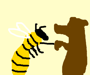 Bees and Bears become friends