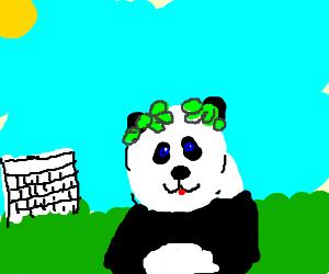 Roman Panda Emperor