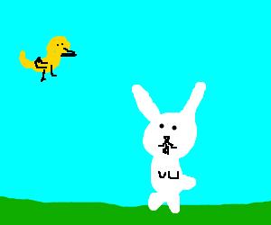 A bird and a bunny...