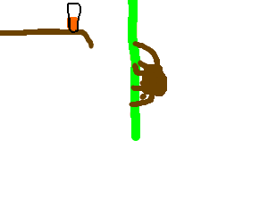 Brown spider tries to climb green rope to get OJ