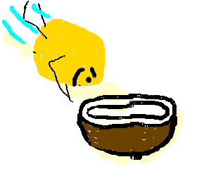 A lemon plunging into a coconut at top speed.
