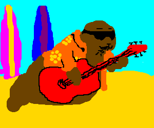Surfer dude sea lion plays a mean guitar