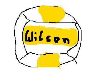 Wilson, the volleyball