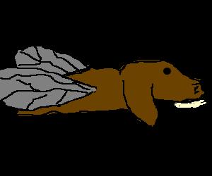 A fly dog