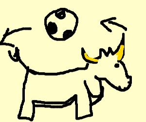 Moon orbits around bull