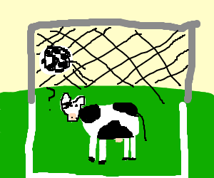 Cow lets in a goal