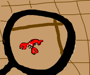 Magnifying glass reveals tiny lobster.