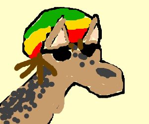 Reggae Jackal