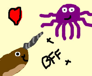 octopus & narwhal are true buddies
