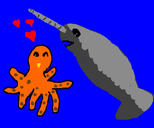 octopus and narwhal love hanging out