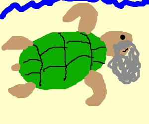 Old bearded man does not equal turtle.