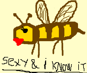 Sexy Bee