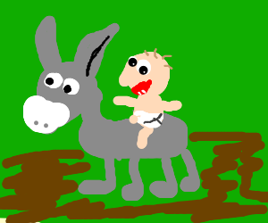 A baby rides a donkey.
