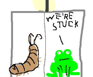 Woodlouse and a frog stuck in an elevator