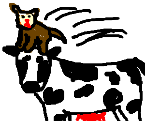 Cat jumps on cow's big stupid head