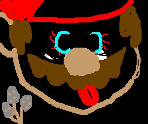 Mario ate a new kind of Mushroom.
