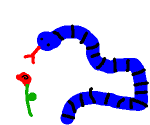 blue tube snakes decide whether to eat lone rose