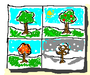 The progression of the seasons on a tree 4 panel