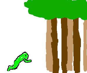 Frog jumping into a wood