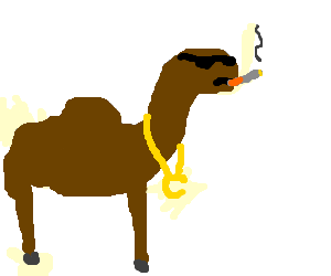 cigarette camel thinks he's a cool dude