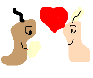 Two worms fall in love