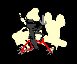 Grey Ninja rides a red bike.