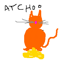 sneezing cat pisses itself