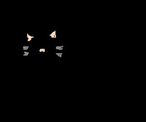 countdown cat