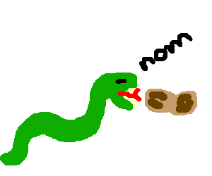 Snake trying to eat a peanut