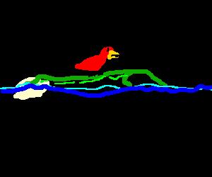 red bird riding an alligator