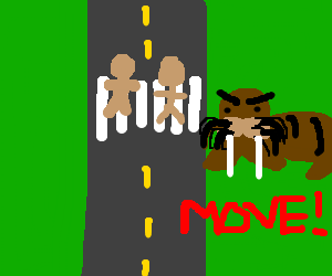 Saddle-wearing walrus is mad about pedestrians