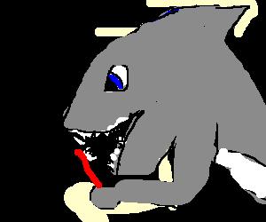 Shark brushing his teeth