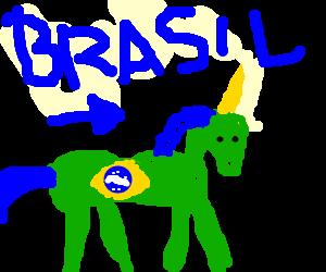 a Brazilian unicorn