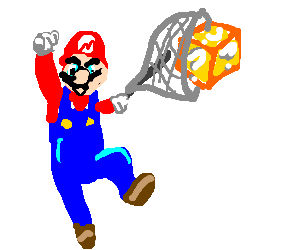 "Mario catches ""? block"" with butterfly net"