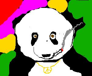 Panda Trippin!
