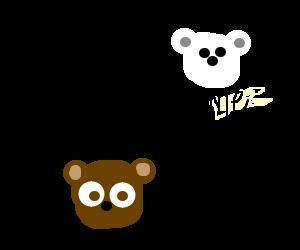 Bear thinks his polar bear.