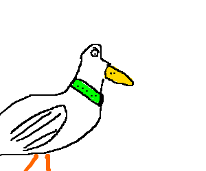 angry duck with green collar