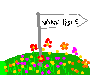 A pole labeled NORTH POLE in a field of flowers